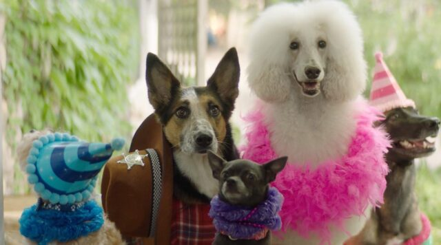 Check out our stars in the new @brettkissel music video